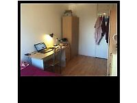 Amazing restructured double room minutes walking to Mile End Station, zone 2.