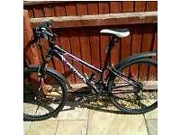 Python ladies mountain bike never been used