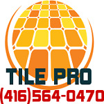 PROFESSIONAL  TILE GUY