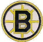 Boston Bruins Pin