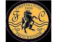 Orpington Ladies Football Club looking for new players for 17/18 season