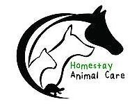 Homestay Animal Care - Pet and house sitting, including dog walking