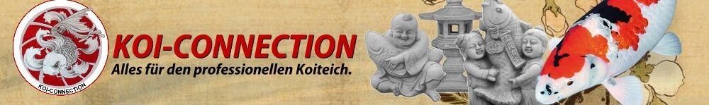 www_koi-connection_de