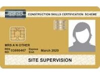 Painter CSCS GOLD CARD NVQ3 SUPERVISOR, IPAF, EMERGENCY FIRST AIDER AT WORK, SSSTS, TOOLS, VAN