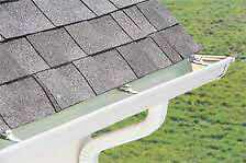 Leaves / Yard - Leaf Clean-up / Gutters - Power Wash Sarnia Sarnia Area image 2