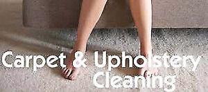 3 rooms and a hallway carpet cleaning $ 89