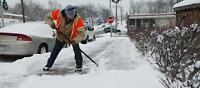 SIDEWALK SNOW REMOVAL TEAM MEMBERS