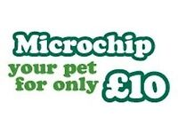 Canine and Small Mammals Microchipping Service.