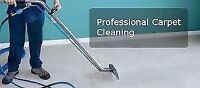 PROFESSIONAL CARPET DEEP STEAM CLEANING