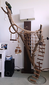parrot stand/ play pen Greenwich Lane Cove Area Preview
