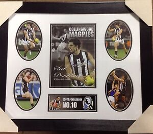 Collingwood Magpies Scott Pendlebury framed montage print Tatura Outer Shepparton Preview