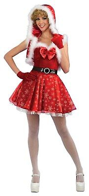 Miss Snowflake Womens Adult Sexy Miss Claus Christmas Costume