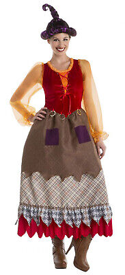 Adult Mary Costume (Hocus Pocus Mary Sanderson Women's Adult Goofy Sister Witch Halloween)