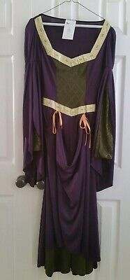 Medieval Lady In Waiting Costume (Lady in Waiting Maid Marian Medieval Renaissance Adult Costume Dress Size)