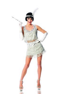 Razzle Dazzle Womens Adult Silver Roaring 20s Flapper Halloween Costume