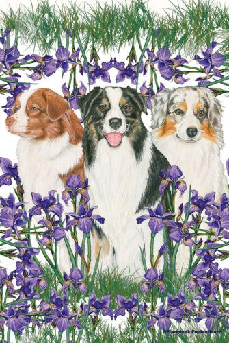 Pipsqueak House Flag - Australian Shepherd Trio 49586
