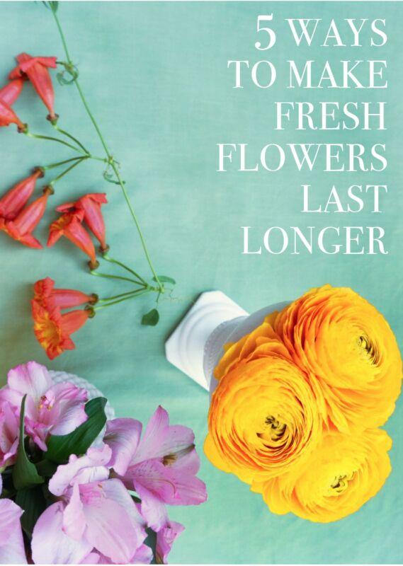 5 ways to make fresh flowers last longer ebay - Ways to make your flowers last longer ...
