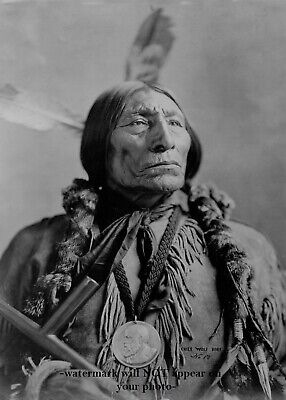 1904 Chief Wolf Robe PHOTO Southern Cheyenne Native American Indian Leader