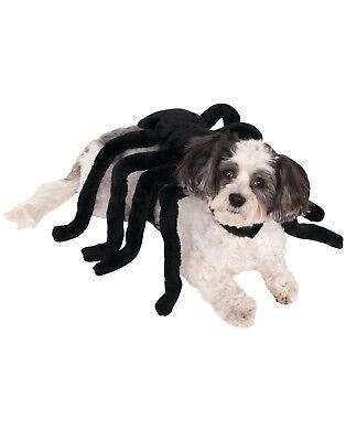 Dog Cat Pet Black Widow Spider Harness Funny - Black Cat Dog Kostüm