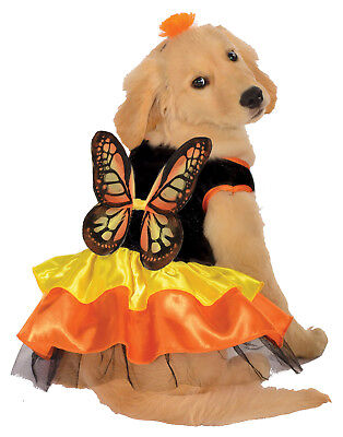 Dog Dress Up Monarch Butterfly Pet Halloween Costume](Dressed Up Dogs Halloween)