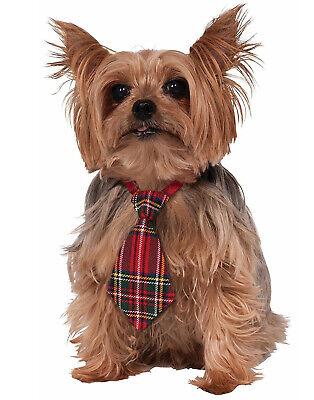 Weihnachten Rot Grün Kariert Hund Haustier Urlaub Festlich - Urlaub Hund Kostüme