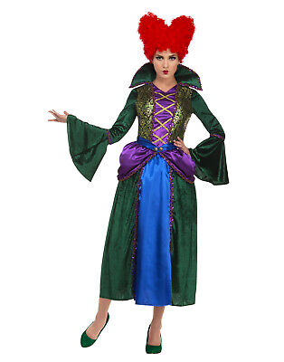 Hocus Pocus Movie Halloween Costumes (Hocus Pocus Witch Winifred Womens Adult Halloween Movie)