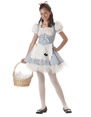 Storybook Sweetheart Dress Apron Crinoline Tween Girls Halloween Costume