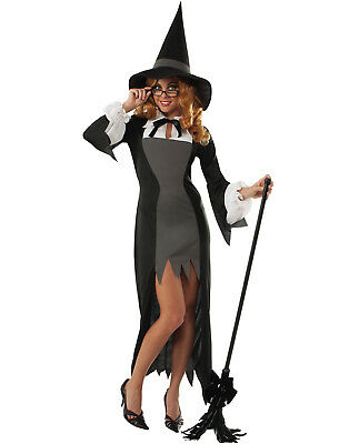 Puritan Witch Adult School Teacher Witch Costume