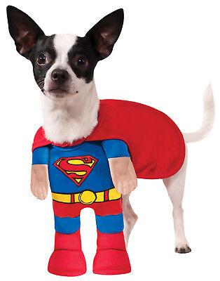 Dog Superman Costume (Superman Pet Dog Walking Dc Superhero Halloween)