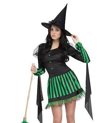Spaß Hexe Zauberer von oz Böse Hexe der West Damen Halloween KOSTÜM S/M