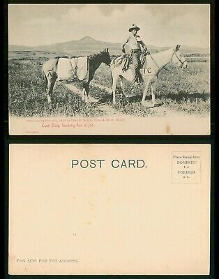 Mayfairstamps Cowboy PC Looking For Job Horses Germany Postcard wwo_56675