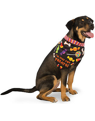 Im Here For The Treats Pet Dog Halloween Trick Or Treat Bandana Collar