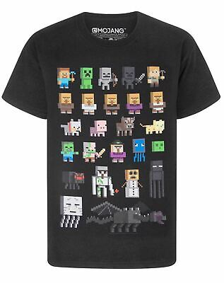 Minecraft Sprites Boys Black Short Sleeve T-Shirt