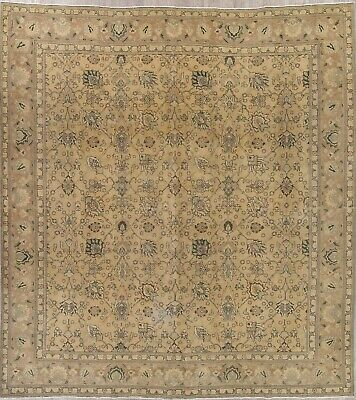 Antique Light Brown Gold SQUARE Muted Persian Oriental Distressed WOOL Rug 11x12