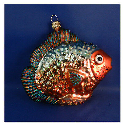 Tropical Fish Sealife Polish Christmas Tree Ornament Glass Blown Animal 022042
