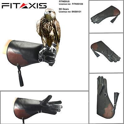 Falknerei , Eule & Adler Linke Hand Hand - Adler Handschuhe