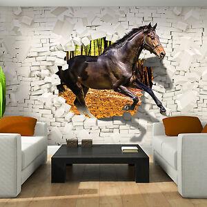pferdetapete tapeten ebay. Black Bedroom Furniture Sets. Home Design Ideas