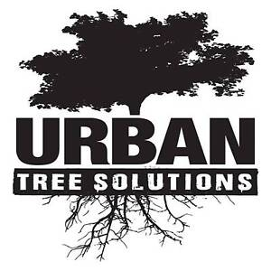 Urban Tree Solutions Mount Hutton Lake Macquarie Area Preview