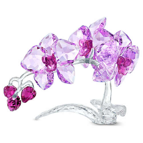 Swarovski Crystal ORCHID Flowers 5520373 New 2021