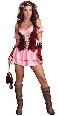 SEXY FAIRE WENCH RENAISSANCE HALLOWEEN COSTUME DRESS LARGE ADULT WOMENS FAIR