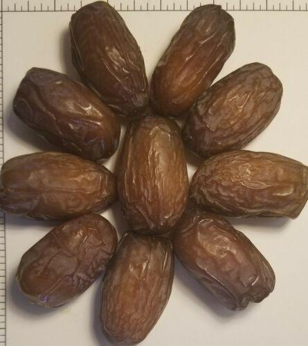SALE! 11 lbs 2020 Soft Medjool Dates - Aceves Farms California