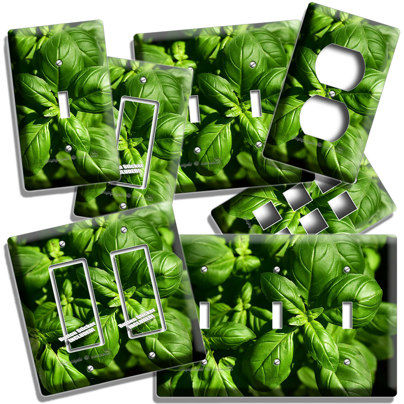 SWEET FRESH BASIL GREEN HERB LIGHT SWITCH OUTLET WALL PLATES