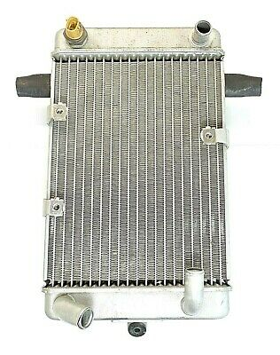 Suzuki AN400, AN400S Burgman, Radiator Assembly, with Fan Switch. 03,04,05,06.