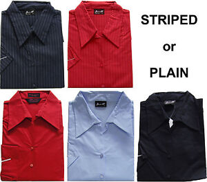Ladies-Shirt-Stripe-Plain-Sizes-12-14-16-18-20-22-New-Lots-of-Colours