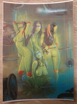 Adult Mutant Ninja Turtles (Adult TMNT Sexy Mutant Ninja Turtles Women Vinyl Decal)