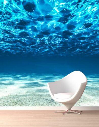 Underwater View of Tropical Beach Wall Mural #6124