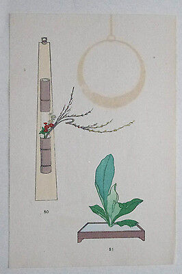 WILLOW & ASPIDISTRA : Japanese WOODBLOCK PRINT Art Ikebana Flower Arrangement