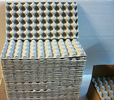 "10 QUAIL EGG Shipping Carton Trays 13"" X 7"" Paper Mache Holders Holds 50 Eggs ea"