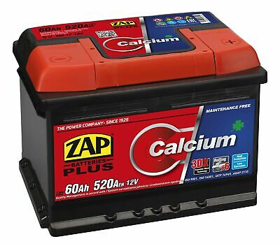 BSA Autobatterie 62Ah 550A//EN 12V Starterbatterie Plupol Links USA US 60Ah 63Ah