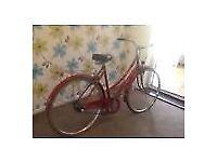 Ladies Loop Dutch Style 3 Speed cheap bike